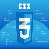 CSS Language Online Test